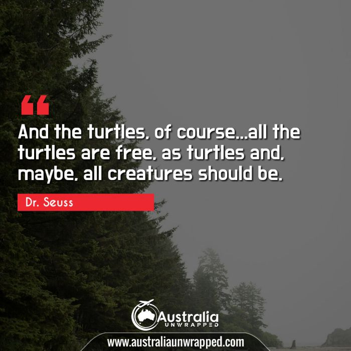 And the turtles, of course…all the turtles are free, as turtles and, maybe, all creatures should be.