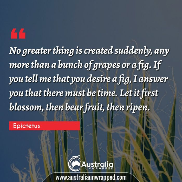 No greater thing is created suddenly, any more than a bunch of grapes or a fig. If you tell me that you desire a fig, I answer you that there must be time.  Let it first blossom, then bear fruit, then ripen.