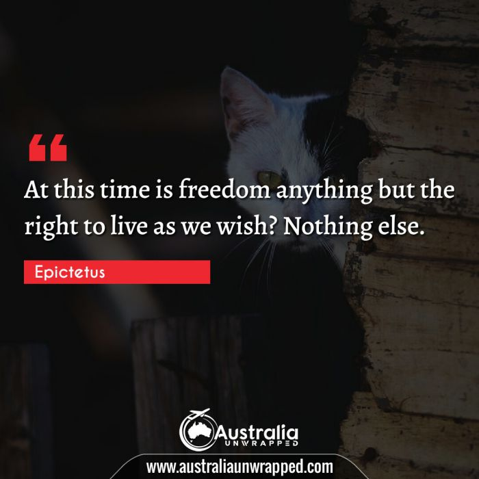 At this time is freedom anything but the right to live as we wish? Nothing else.