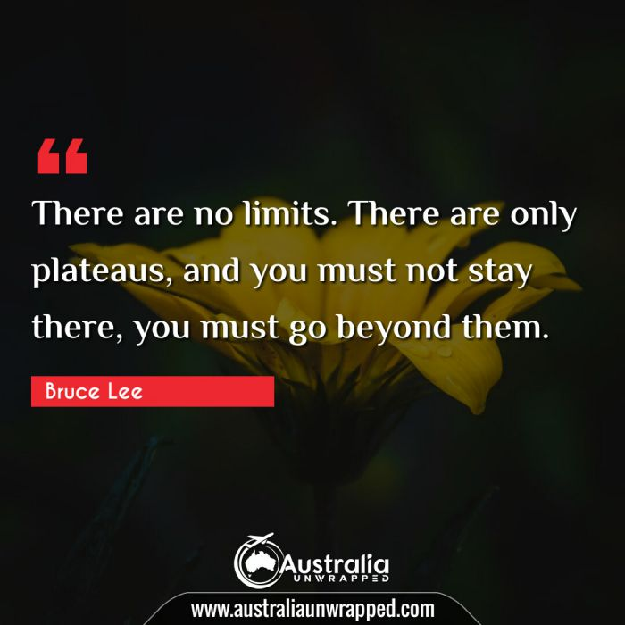 There are no limits. There are only plateaus, and you must not stay there, you must go beyond them.