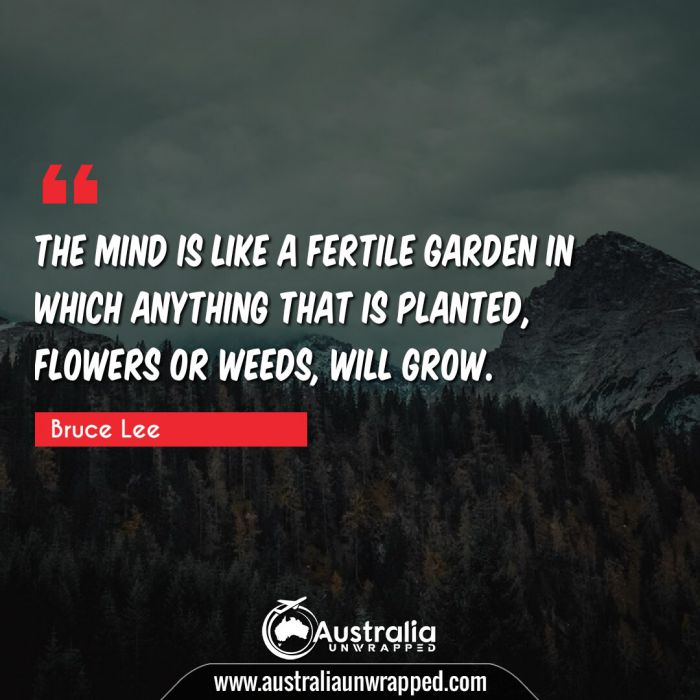 The mind is like a fertile garden in which anything that is planted, flowers or weeds, will grow.