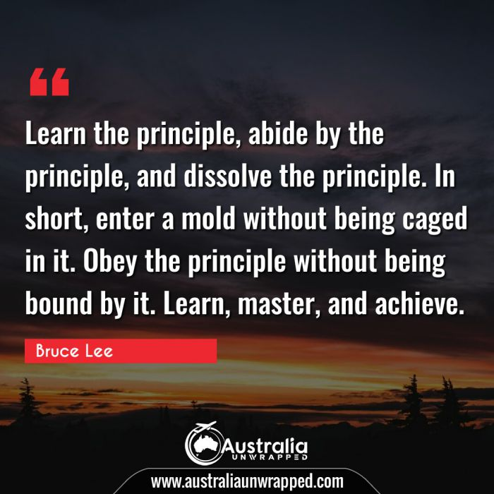 Learn the principle, abide by the principle, and dissolve the principle. In short, enter a mold without being caged in it. Obey the principle without being bound by it. Learn, master, and achieve.