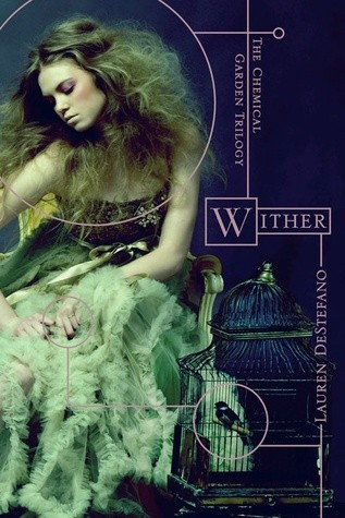 """Wither"" a future time story"