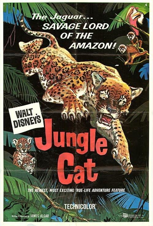 Jungle Cat (1960)