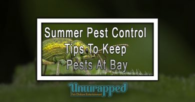 Summer Pest Control Tips To Keep Pests At Bay