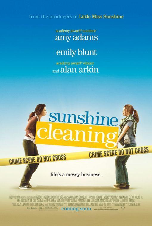 Sunshine Cleaning (2008)