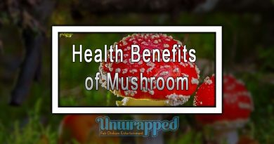Health Benefits of Mushroom