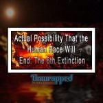 Actual Possibility That the Human Race Will End: The 6th Extinction