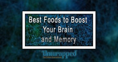 Best Foods to Boost your Brain and Memory
