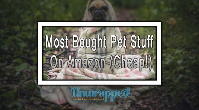 Most Bought Pet Stuff On Amazon (Cheap!)