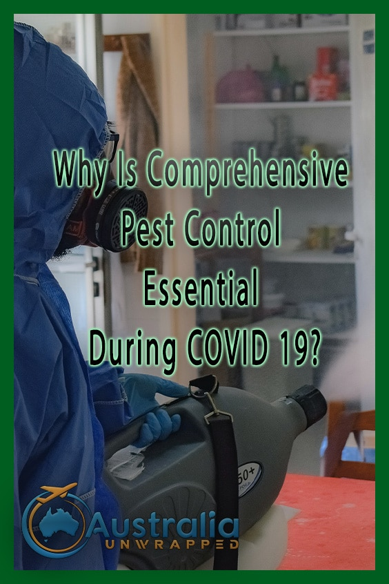 Why Is Comprehensive Pest Control Essential During COVID 19?