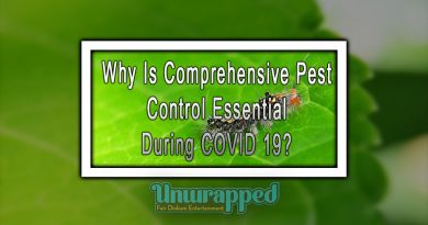 Why Is Comprehensive Pest Control Essential During COVID 19