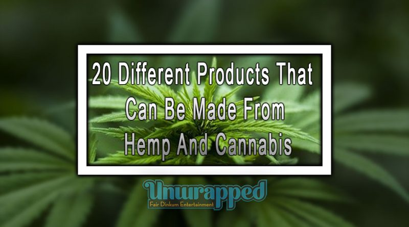 20 Different Products That Can Be Made From Hemp And Cannabis