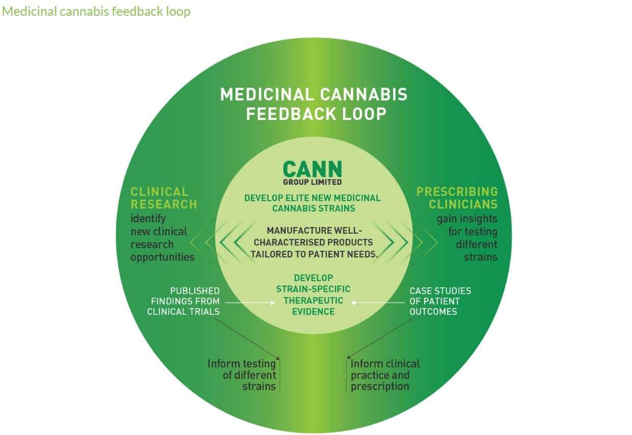 Are Cann Group a Good or Risky Investment