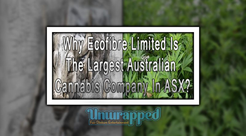 Why Ecofibre Limited Is The Largest Australian Cannabis Company In ASX?