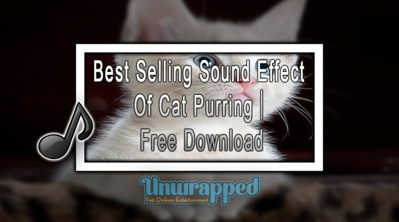 Best Selling Sound Effect Of Cat Purring|Free Download