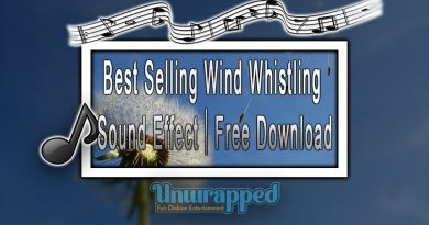 Best Selling Wind Whistling Sound Effect|Free Download