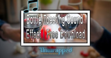 Bottle Toasting Sound Effect|Free Download