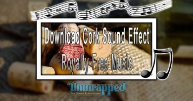 Download Cork Sound Effect|Royalty-Free Music