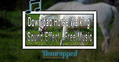 Download Horse Walking Sound Effect|Free Music