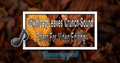Download Leaves Crunch Sound Effect For Video Editing