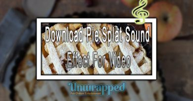Download Pie Splat Sound Effect For Video