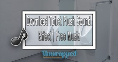Download Toilet Flush Sound Effect|Free Music
