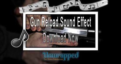 Gun Reload Sound Effect|Download Now