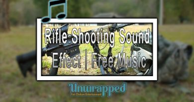 Rifle Shooting Sound Effect|Free Music