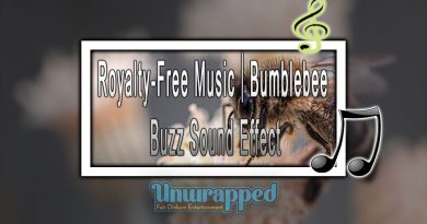 Royalty-Free Music|Bumblebee Buzz Sound Effect
