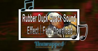 Rubber Duck Quack Sound Effect|Free Download