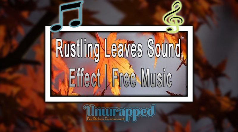 Rustling Leaves Sound Effect|Free Music