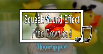 Squeak Sound Effect|Free Download