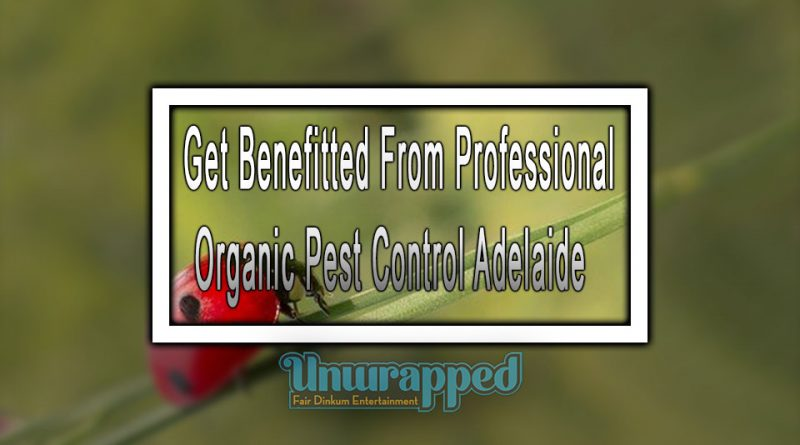 Get Benefitted From Professional Organic Pest Control Adelaide