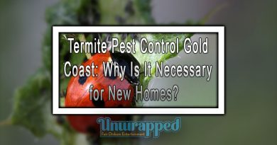 Termite Pest Control Gold Coast: Why Is It Necessary for New Homes?