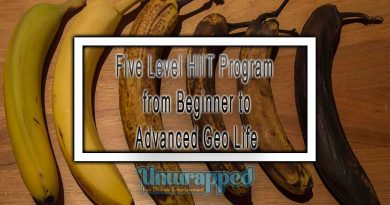 Five Level HIIT Program from Beginner to Advanced Geo Life
