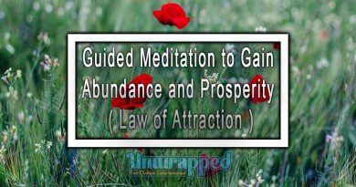 Guided Meditation to Gain Abundance and Prosperity ( Law of Attraction )