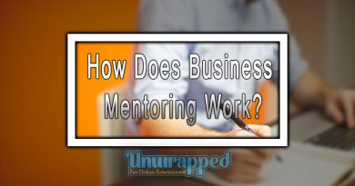 How Does Business Mentoring Work?