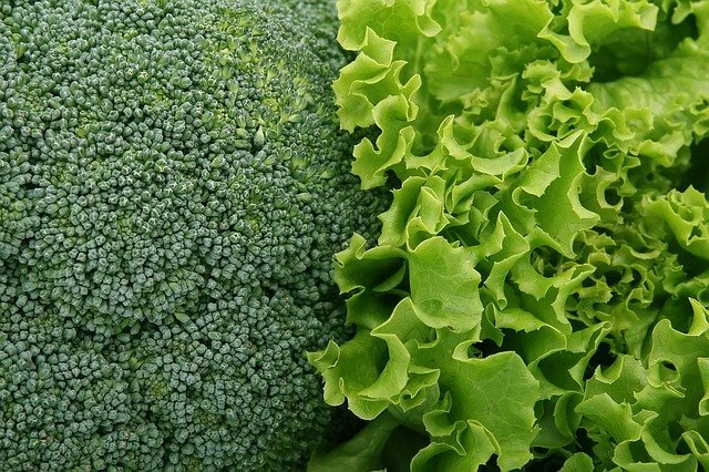 Top 10 Healthiest Green Vegetables