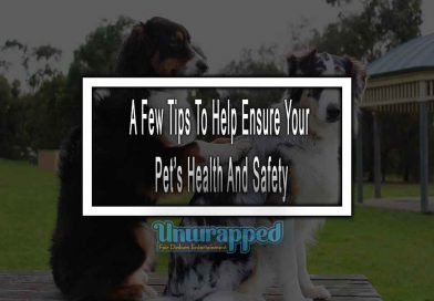 A Few Tips To Help Ensure Your Pet's Health And Safety