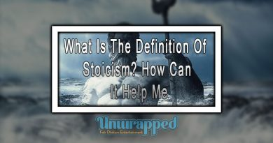 What Is The Definition Of Stoicism? How Can It Help Me