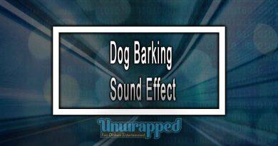 Dog Barking Sound Effect