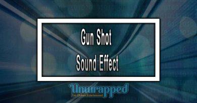 Gun Shot Sound Effect