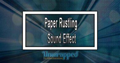 Paper Rustling Sound Effect