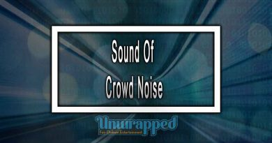 Sound Of Crowd Noise