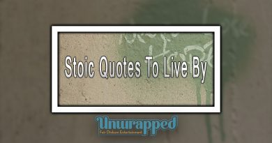 Stoic Quotes To Live By