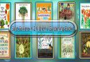 Top 10 Must Read Gardening Best Selling Kids Novels