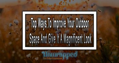 Top Ways To Improve Your Outdoor Space And Give It A Magnificent Look