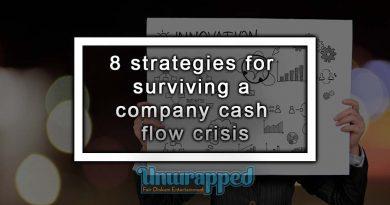 8 strategies for surviving a company cash flow crisis