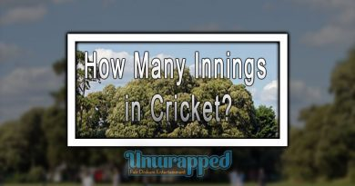 How Many Innings in Cricket?